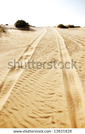 car tracks in sand beach - stock photo