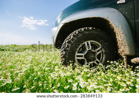 Car wheel in the green grass and flowers. Journey SUV, the plains and the mountains, summer and winter in search of adventure and discovery.  - stock photo