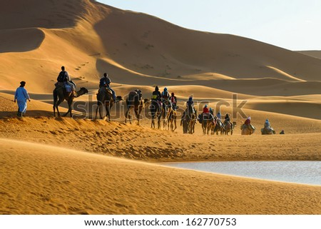 Caravan of tourists on camels riding to the desert passing the lake - stock photo