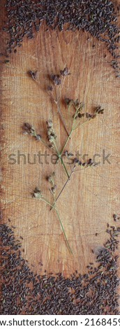 Caraway/carum carvi seeds and umbels arranged on old wooden cutting board - stock photo