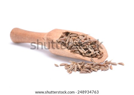 Caraway seed in an olive wood scoop and scattered isolated on white background. - stock photo