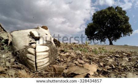 Carcass of dead donkey with some clouds, died from famine, thirst, drought, with dry skin and white bones - stock photo