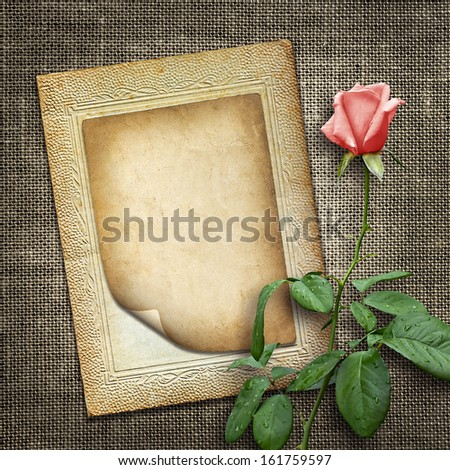 Card for invitation or congratulation with pink rose in vintage style - stock photo