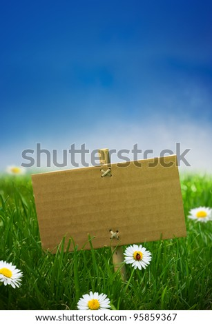 cardboard sign in a green garden grass, nature background, empty blue sky some daisies flowers and a ladybird - stock photo