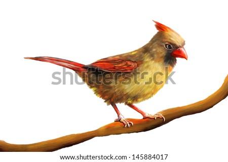 Cardinal Painting - stock photo