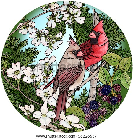 Cardinals berries & blossoms - stock photo
