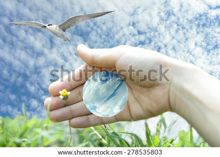 Care the blue world and nature with human hand - stock photo