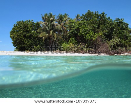 Caribbean beach with tropical vegetation viewed from the sea surface - stock photo