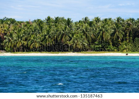Caribbean island shore with blue water and a forest of coconut palm trees, cayos Zapatilla, Bocas del Toro, Panama - stock photo