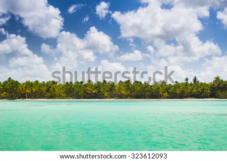 Caribbean wild beach with palm trees at blue lagoon, Saona Island, Dominican Republic - stock photo
