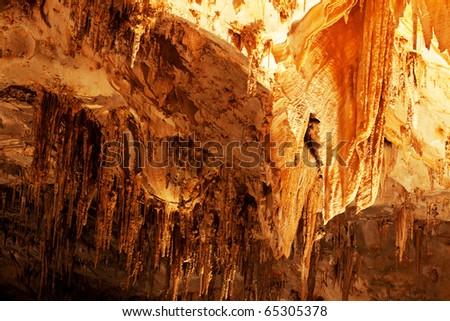 Carlsbad Caverns National Park in USA - stock photo