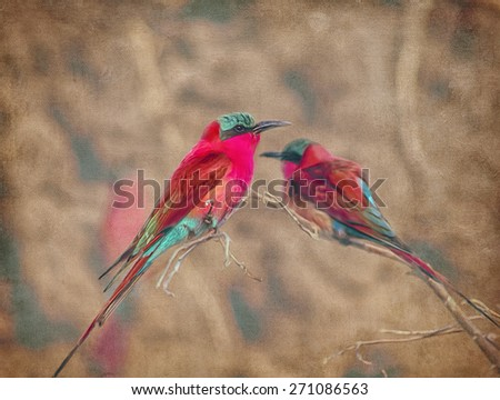 Carmine bee eater digital oil painting against textured background - stock photo