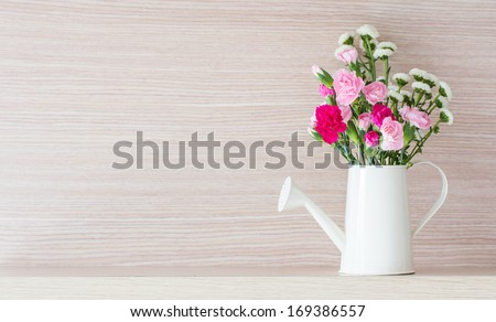 Carnations in watering - stock photo