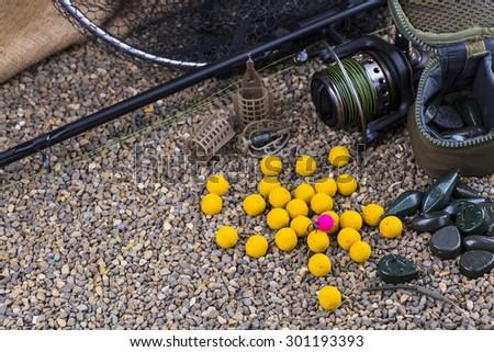 carp catch - stock photo