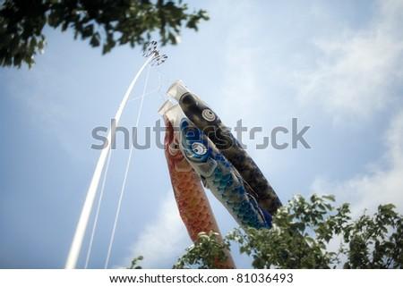 carp streamer - stock photo
