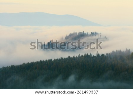 Carpathian morning mountain fog - stock photo