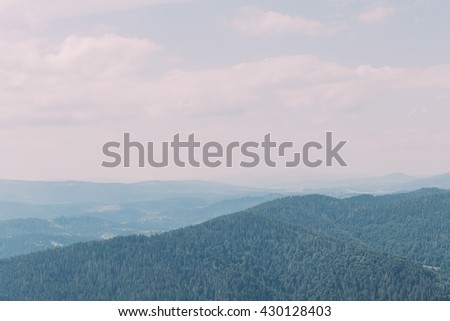 Carpathian pine forest hills landscape under majestic blue sky with some high clouds - stock photo