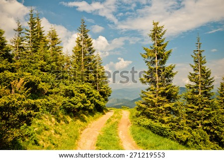 Carpathians mountains, Ukraine - stock photo