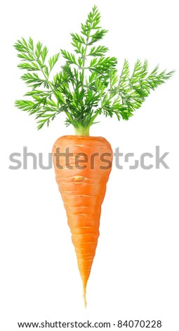 Carrot isolated on white - stock photo