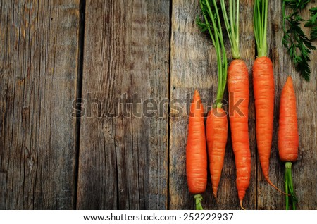 carrot on a dark wood background. tinting. selective focus - stock photo