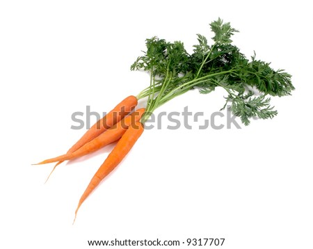 carrot on the white - stock photo