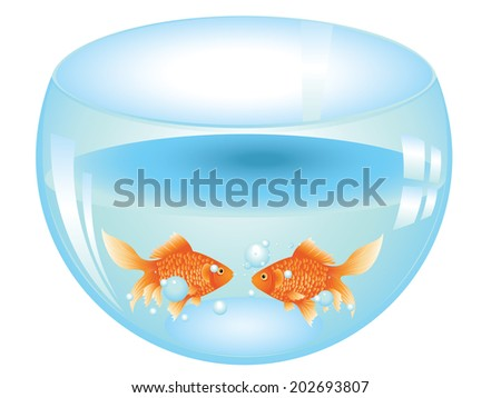 Cartoon gold fish swimming in the water in a fishbowl. - stock photo