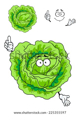 Cartoon illustration on white of smiling fresh green cabbage with a