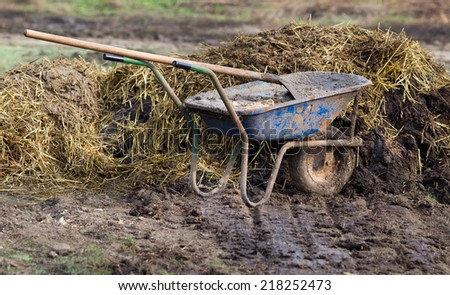 Carts with natural cow manure standing on farm - stock photo