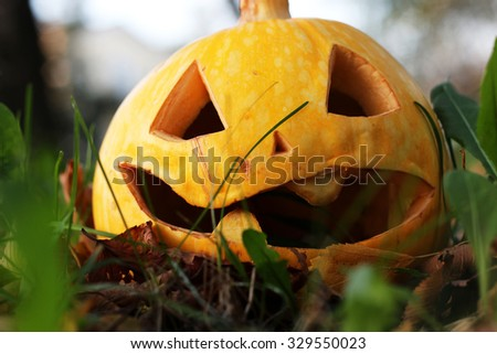 carved Halloween pumpkin on lawn - stock photo