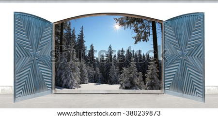 carved open double door with view to wintry forest - stock photo