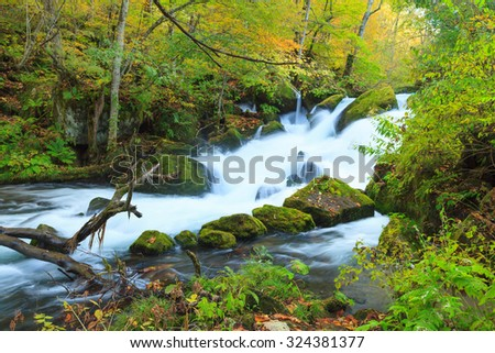 Cascade at Oirase Stream (Oirase Keiryu), the mountain stream outlet draining Lake Towada in Aomori Prefecture, Tohoku region, Japan. The most famous and popular autumn colors destinations in Japan. - stock photo