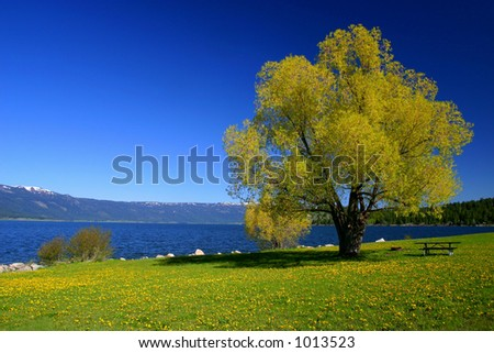 Cascade Idaho - stock photo