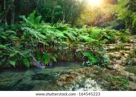 Cascades National Park in Guatemala Semuc Champey at sunset - stock photo