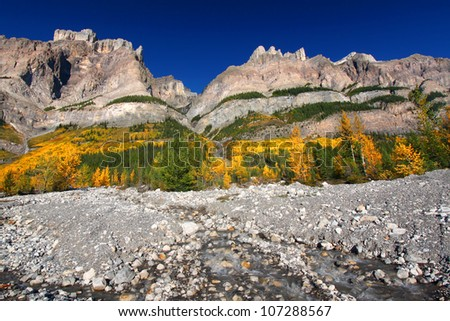 Cascading water flows down of the pine covered cliffs of Mount Wilson in Banff National Park - Canada - stock photo