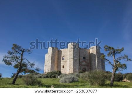 Castel Del Monte on a hilltop in Puglia, Italy - stock photo
