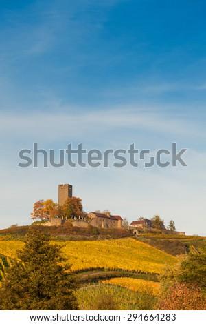 Castle Steinsberg - stock photo