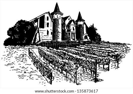 Castle - vineyard - stock photo