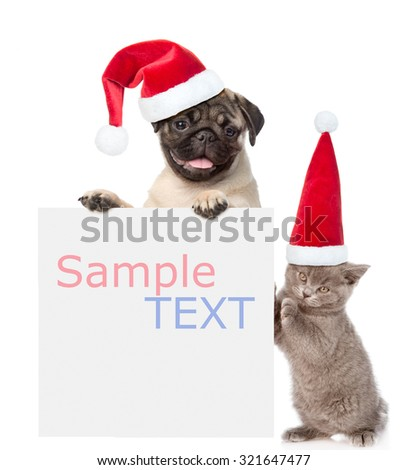 Cat and Dog with red christmas hats peeking from behind empty board and looking at camera. isolated on white background - stock photo
