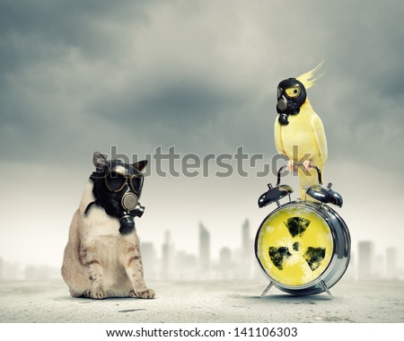 Cat and parrot in gas masks. Ecology concept - stock photo
