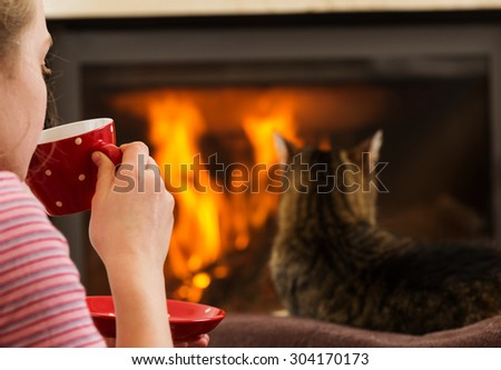 cat by the fireplace  - stock photo