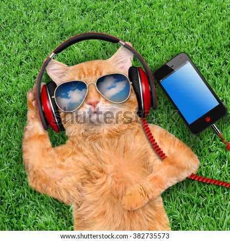 Cat headphones  wearing sunglasses relaxing in the grass. - stock photo