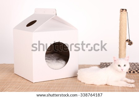 cat in the cat house - stock photo