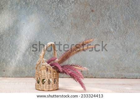 Cat tail still life in small basket - stock photo