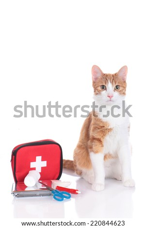 cat with first aid kit - stock photo