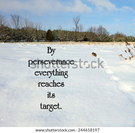 Catalan proverb with inspirational words about perseverance with a little mouse trudging through the snow, trying to reach the cover of the distant forest. - stock photo