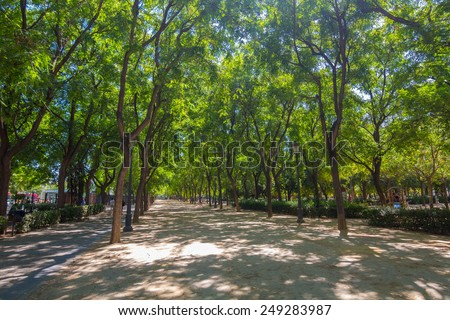 Catalina de Rivera gardens in the city of Seville, Spain - stock photo