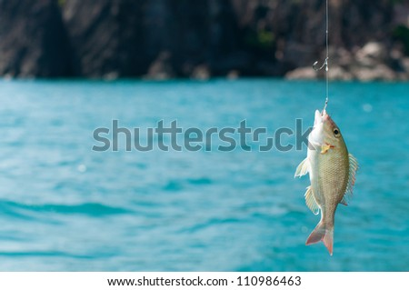 Catching a Perch Fish - stock photo