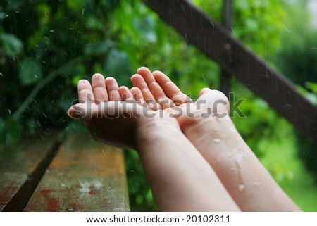 Catching the raindrops in the garden - stock photo