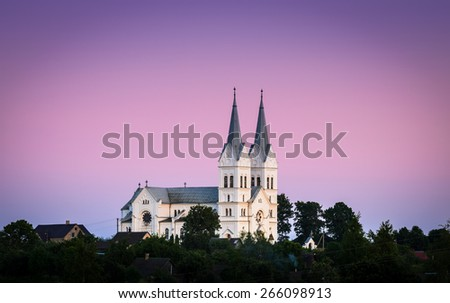 Catholic church on the violet sunset sky background - stock photo