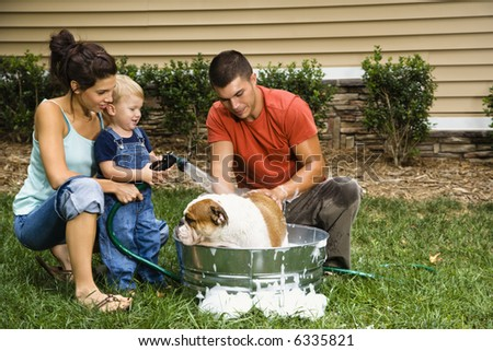 Caucasian family with toddler son giving  English Bulldog a bath outdoors. - stock photo